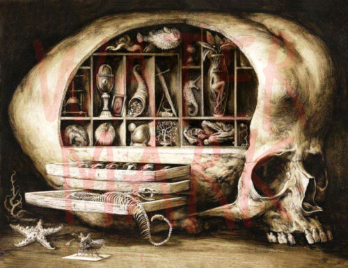 Vintage scary painting//weird and macabre skull //Poster //17x22 inch
