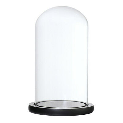 Decorative Clear Glass Cloche Bell Jar Display Flower Vase Micro Landscape B
