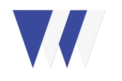 Bleu Blanc Bunting alternant Drapeaux Anniversaire Festival Football Couleurs 10 Mètre