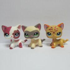 2x Littlest Pet Shop Lps Toy Shorthair Kitty Cat 2291 Glitter 1116