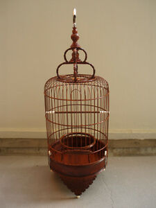 Red-Deep-Mahogany-Colored-Puteh-Cage-Bird