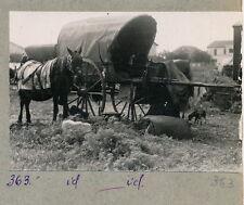 SAINTES MARIES DE LA MER c. 1940 - Camp Gitans - C SMM 15