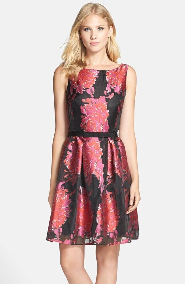 Taylor Dresses Floral Burnout Organza Fit & Flare Dress (Size 12)