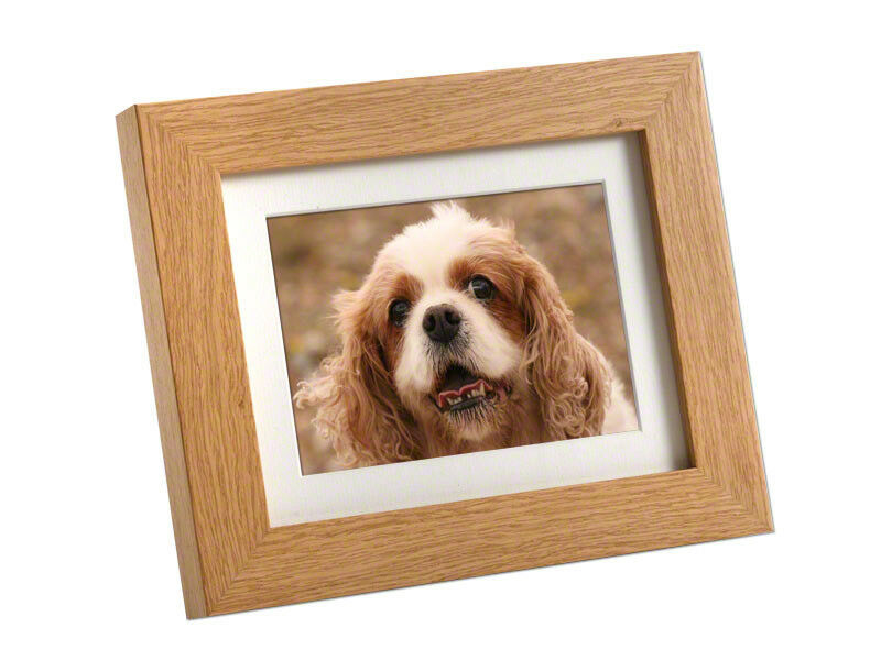 Pet Memorial Photo Urn Tribute Micro Frame 6 X 4 250cc Ebay