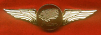 Last Of The Indian Motorcycle Golden Deluxe Pilot Wings 2