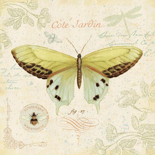 Daphne Brissonnet  Cote Jardin II Keilrahmen-Bild Leinwand Schmetterling Deko