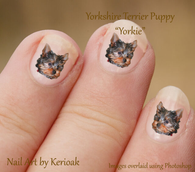 Yorkshire Terrier Puppy Yorkie Set of 24 Dog Nail Art Stickers ...