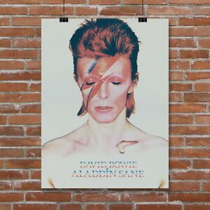 Details about David Bowie Aladdin Sane Canvas Art Print Poster CD Album  Cover