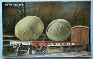 137-Exaggerated-Postcard-of-Ear-of-Giant-Cabages-on-a-L-S-amp-M-S-Railroad-Car