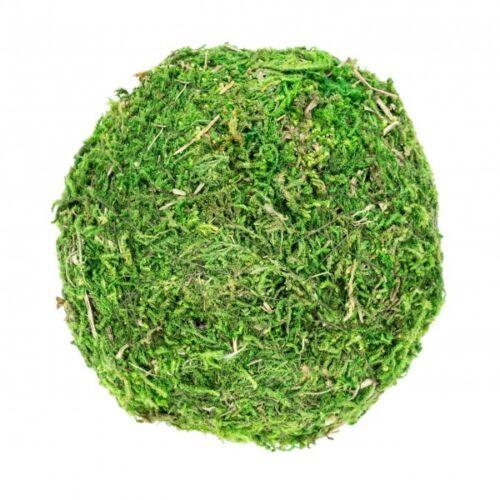 NaDeco® Moos Ball Ø 10cmMoos KugelMoosballMooskugel