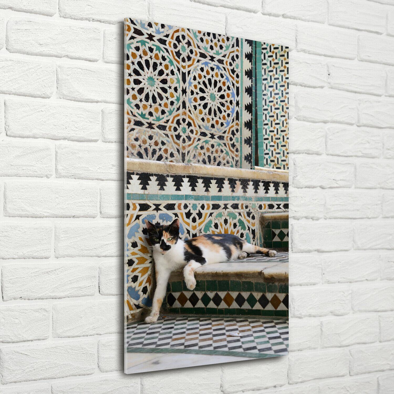 Wand-Bild Kunstdruck aus Acryl-Glas Hochformat 70x140 Katze Marokko
