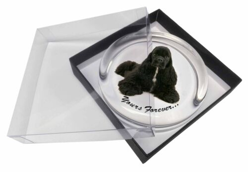 American Cocker Spaniel 'Yours Forever' Glass Paper in Gift Box, ADACS2PW