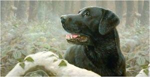 Faithful-Companion-Black-Labrador-greetings-slim-card-blank-John-Silver