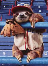 Sloth At Baseball Game Avanti Birthday Card - Greeting Card by Avanti Press