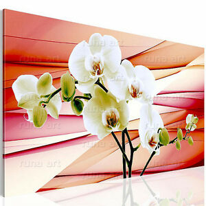 bilder leinwand bild 2020137a orchidee kunstdruck blumen rot 1tlg ebay. Black Bedroom Furniture Sets. Home Design Ideas