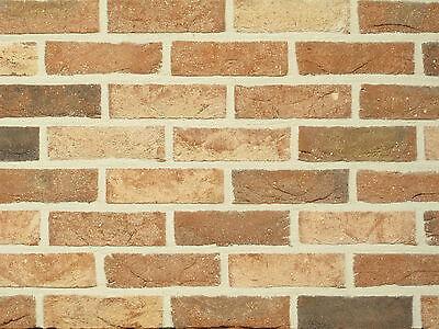 Baustoffe & Holz Humorvoll Handform-verblender Wdf Bh171 Braun-beige-bunt Klinker Vormauersteine ZuverläSsige Leistung