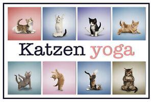 Chats-Cats-Yoga-Panneau-Metallique-Plaque-Voute-Metal-Etain-Signer-20-X-30-cm