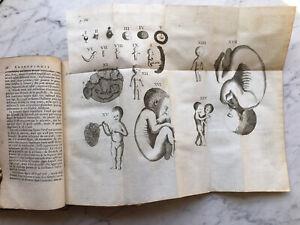 1766-Abrege-de-l-039-Embryologie-Sacree-Medecine-Cangiamila-Obstetrique-Provenance