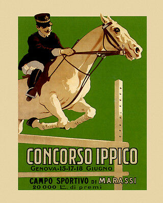 Horse Dressage X-Country English Saddle 16X20 Vintage Poster FREE SHIP USA