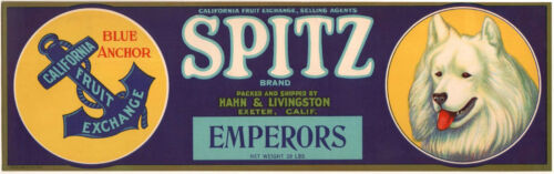 *Original* SPITZ Emperor AMERICAN ESKIMO DOG Exeter Grape Label NOT A COPY!