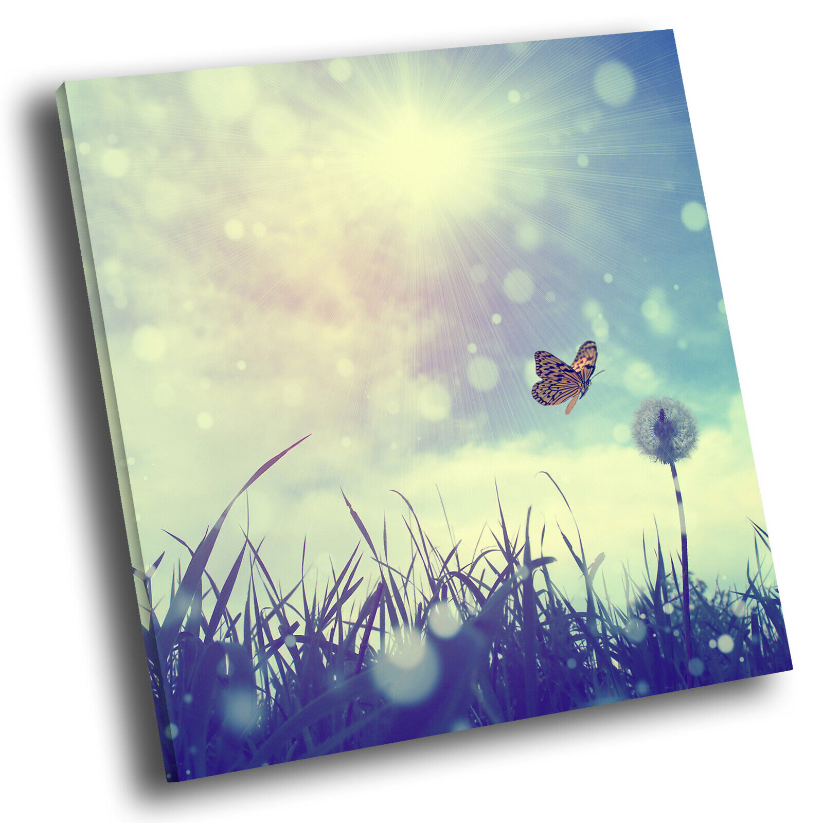 Blau Butterfly Dandelion Flower Square Scenic Canvas Wall Art Picture Print