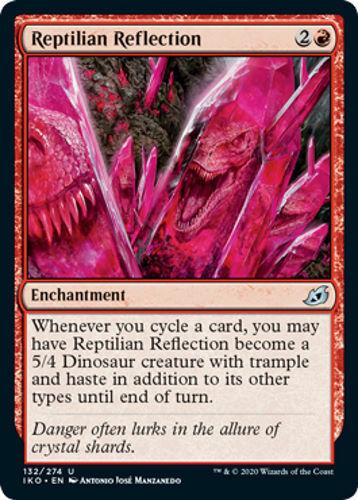 4 Reptilian Reflection