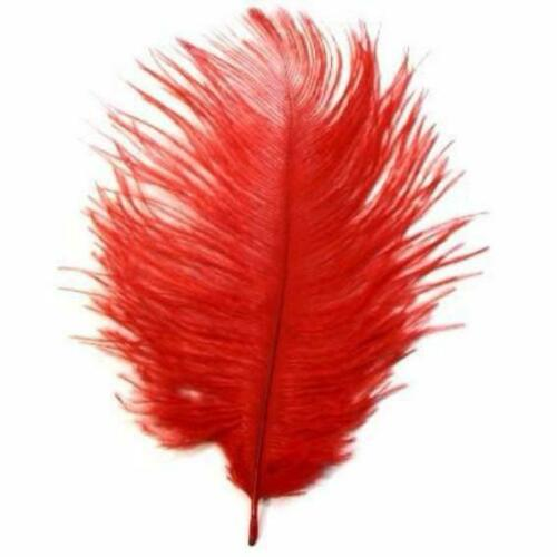 Red SECONDS Ostrich Feather Drab 6-15cm x 5