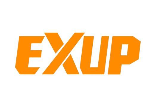 2 x EXUP Decal argent chromé VINYL STICKERS MOTO 17 couleurs 150 x 50 mm