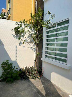 Casa en renta en Fraccionamiento Mediterraneo Ciudad del Carmen