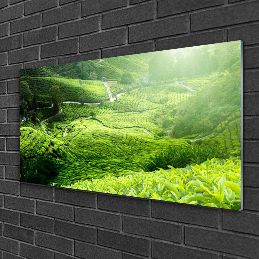 Muro immagini da plexiglas ® 100x50 vetro acrilico immagine PRATO NATURA