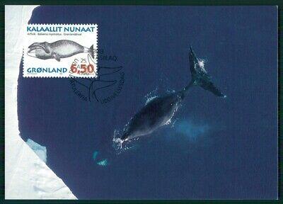 PüNktlich GrÖnland Mk 1996 Fauna Wal Wale Wahle Whales Baleine Maximumkarte Mc Cm En76