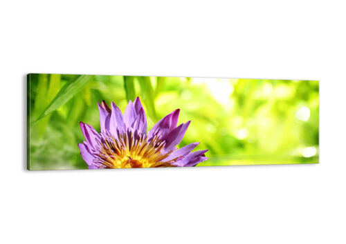 CANVAS PICTURE Flower Nature Bamboo WALL ART 30 SHAPES UK 2476