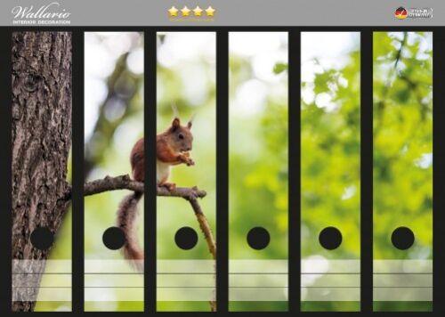 Eichhörnchen im Wald Wallario Ordnerrücken selbstklebend für 6 breite Ordner