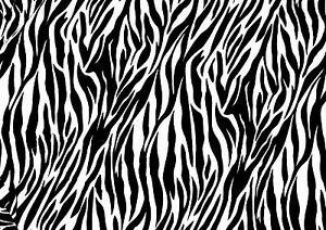Fondos animal print blanco y negro