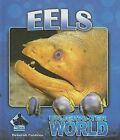 Eels by Deborah Coldiron (Hardback, 2007)