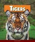 Tigers by Jenny Markert (Hardback, 2015)