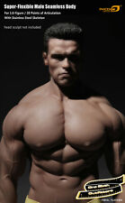 1/6 Phicen Male Seamless Muscle Body M34 Terminator Arnold Connor Toys Hot USA