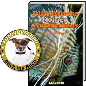 Alles-ueber-Diskusfische-Koenige-Amazoniens-Lebensraum-Amazonas-und-Aquarium