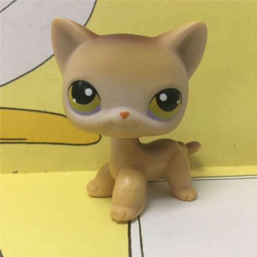 Littlest Pet Shop Animal Littlest Pet Shop #19 Amarelo Marrom Cabelo Curto Gatinha Brinquedo De Criança