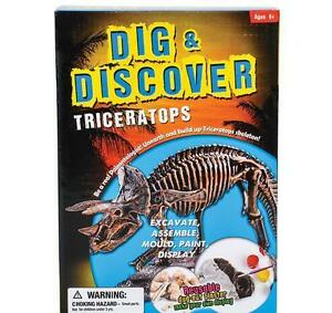 12-in-Triceratops-Excavation-kit-fossil-dig-paint-DINOSAUR-bones-display-DPTRI