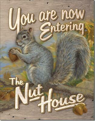 You Are Now Entering The Nut House Squirrel Funny Humorous Tin Metal Sign