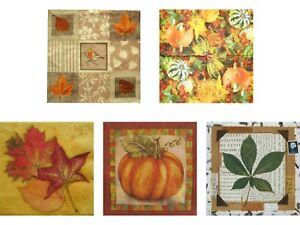 Servietten-Set-034-Herbst-2-034-20-St-5-versch-Herbstmotive-dreilagig-33x33-cm