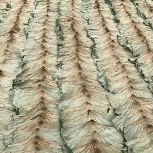Dried-Lotus-Leaves-500g-Asian-Rice-Food-Wrapping-Chinese-Cooking