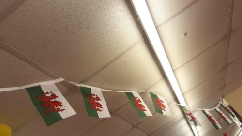 Welsh Flag Quality Bunting 10 Flags 4.5mt Length Rugby St Davids Party Wales