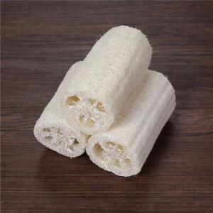 Natural-Loofah-Luffa-Bath-Shower-Wash-Body-Pot-Bowl-Sponge-Scrubber-Pip-L-iv