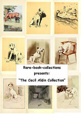 12 RARE CECIL ALDIN ILLUSTRATED BOOKS ON DVD - PASTEL CHALK DOGS ART ILLUSTRATOR
