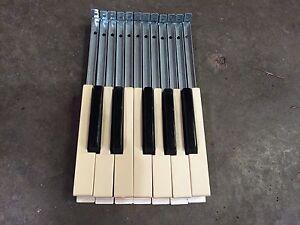 Baldwin Organ Waterfall Style Keys One Octave FAST SHIP!