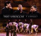 A Cavallu von Trio Sarocchi (2015)