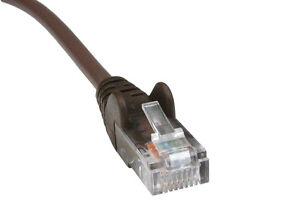 1.5 Mètres Marron Cat5e Ethernet Câble Patch Patch Plomb Plus Sur Notre Boutique Ebay-afficher Le Titre D'origine