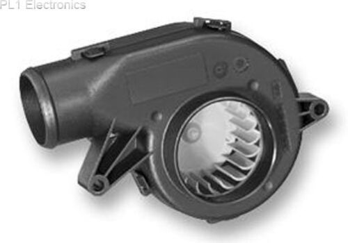 BALAIS charbon carbone pour Bosch GBM 10-2//GBM 10-2re//guitariste 13 ses//GBM 13-2//a9